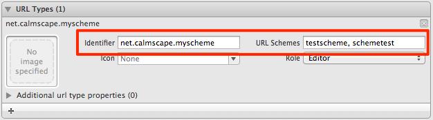 URL Types 登録